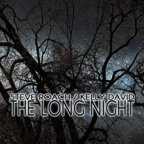 steve-roach-kelly-david-the-long-night-2013