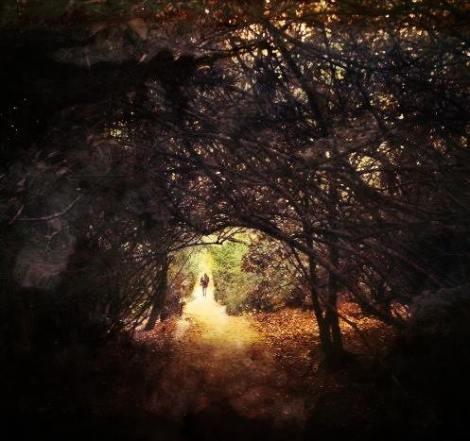 Photography by Grey Malkin for TSL